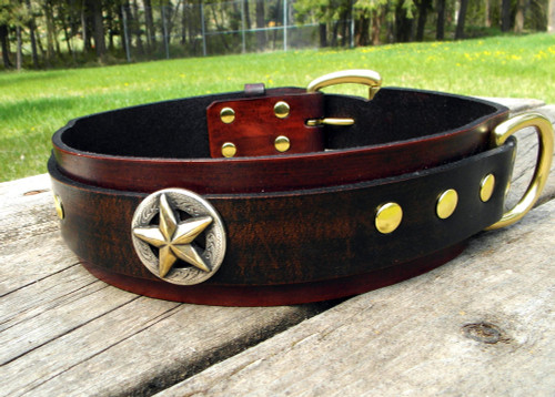 Big Star Dog Collar