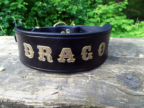 Personalized Dog Collar XL