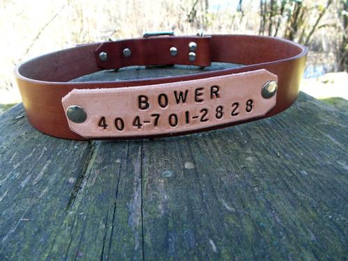 Name Tag Dog Collar