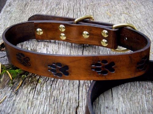 Wolf Track Dog Collar