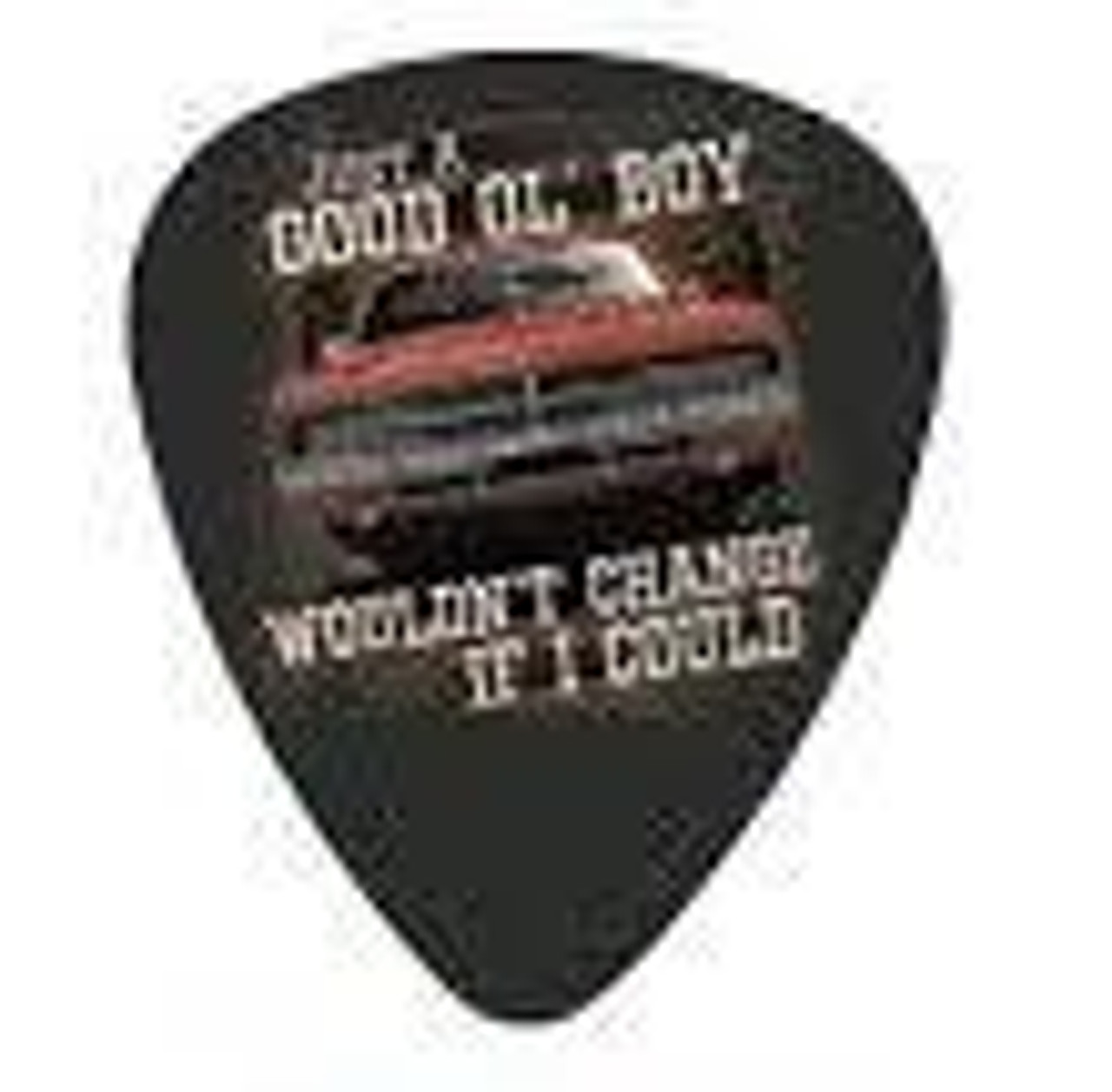"""Guitar Pick """"Wouldn't Change If I Could"""""""