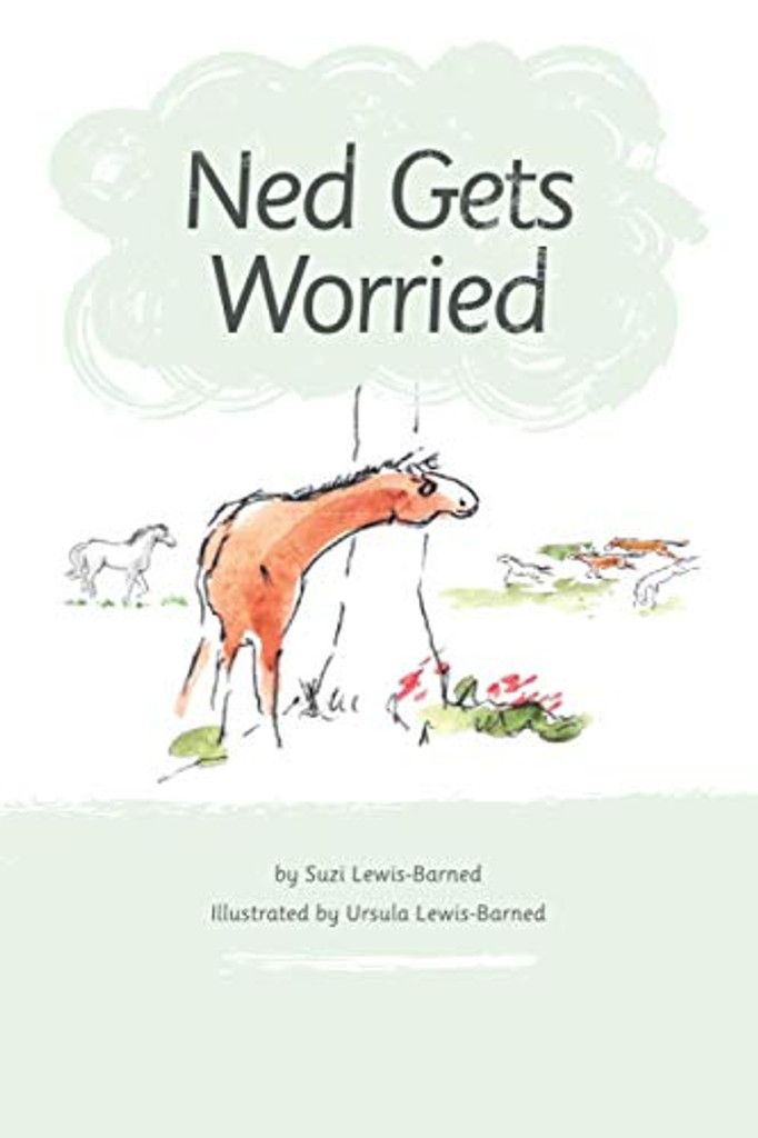 Ned Gets Worried by Suzi Lewis-Barned
