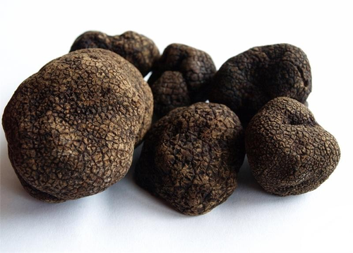 Urbani Truffles Fresh Black Winter Truffles - 2oz