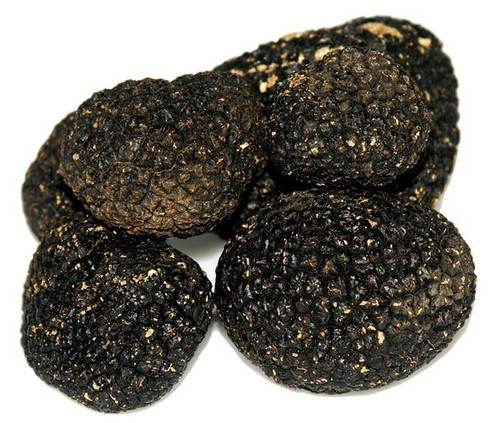 Urbani Truffles Fresh Black Summer Truffles  1 oz