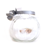 Small white and silver Fairy Jar