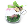 Small Pink and apple green  Fairy Jar  *optional tooth jar
