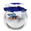 Boy Fairy Football kit in Blue medium Fairy Jar