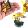 BUZZY Fairy Charm Jar Choice of hair colours & collectors bead
