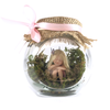 Small Fairy Jar sitting up Enchanted Garden pink