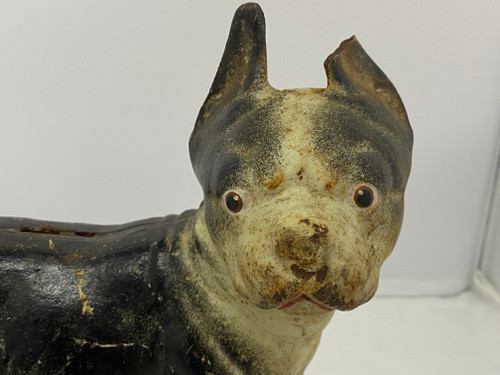 HUBLEY Antique Cast Iron Boston Terrier Money Box - 25cm Tall