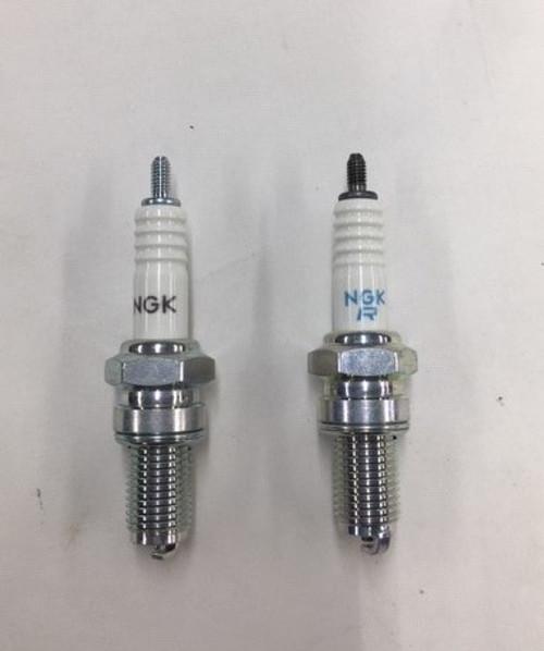 NGK Spark Plugs