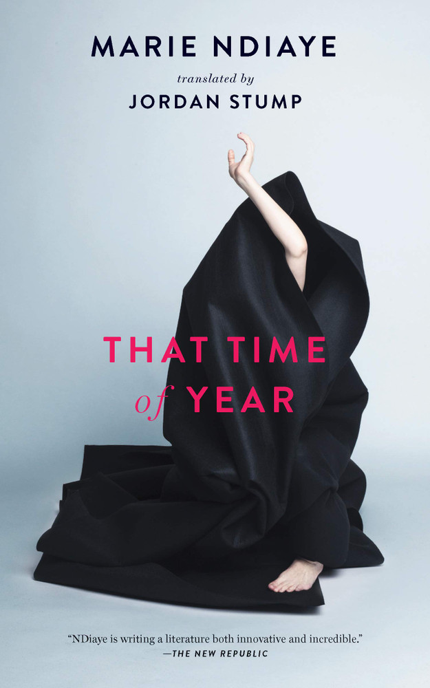 That Time of Year Hardcover by Marie NDiaye (Author), Jordan Stump (Translator)