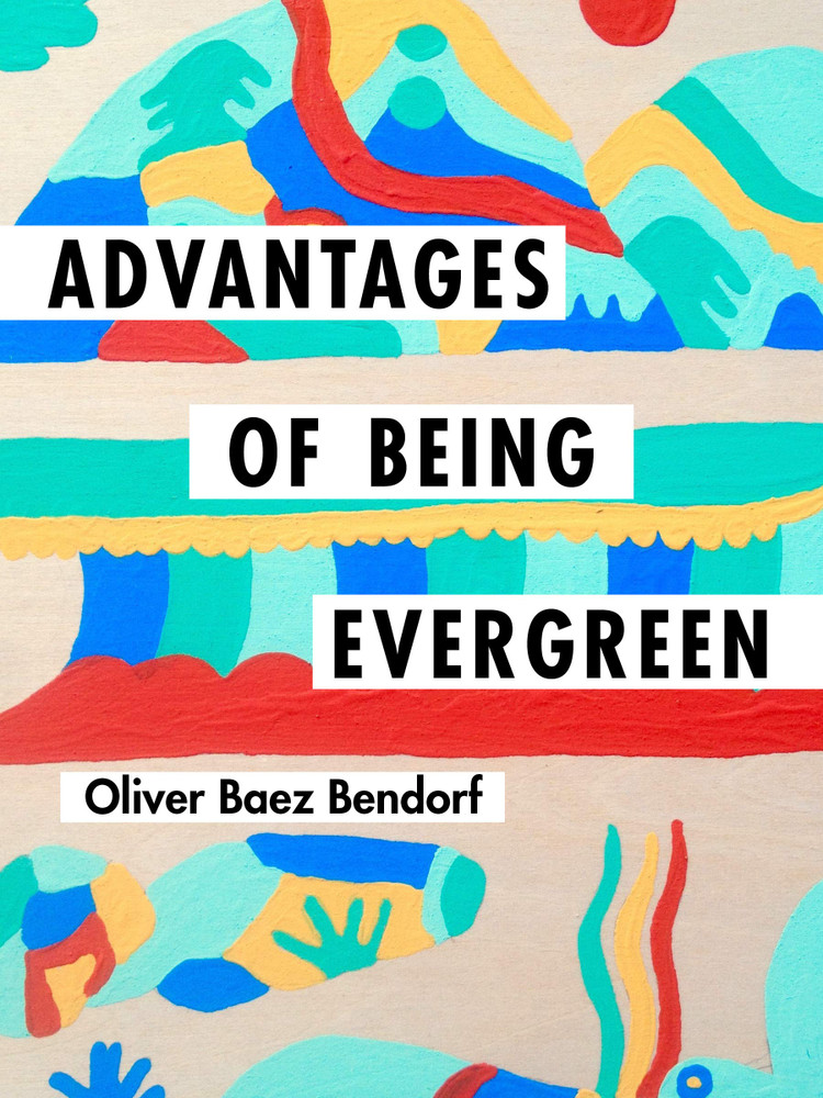 Advantages of Being Evergreen Paperback – September 10, 2019 by Oliver Baez Bendorf (Author)