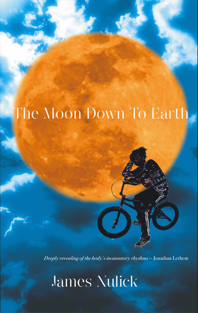 The Moon Down to Earth, a novel by James Nulick.