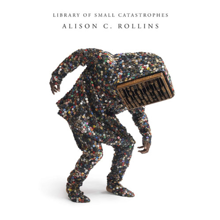 Library of Small Catastrophes Paperback