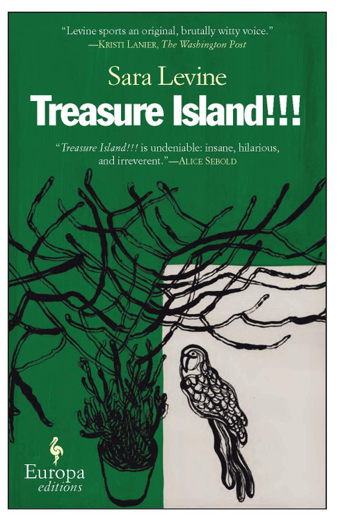 Treasure Island!!! Paperback book by Sara Levine  (Author)