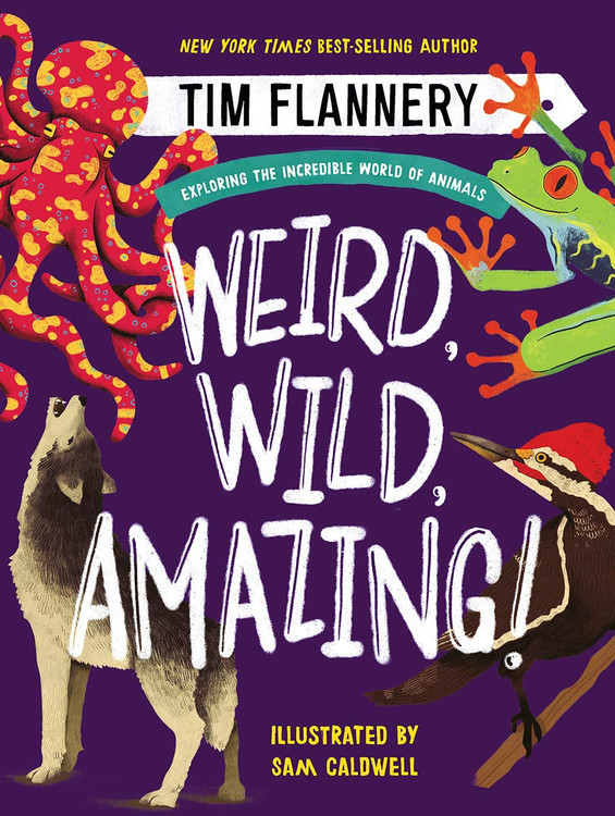 Weird, Wild, Amazing!: Exploring the Incredible World of Animals Hardcover by Tim Flannery (Author), Sam Caldwell (Illustrator)