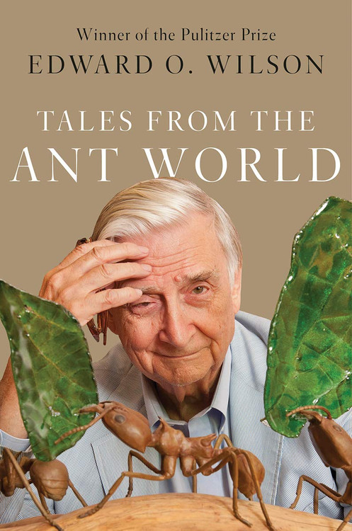 Tales from the Ant World Hardcover by Edward O. Wilson
