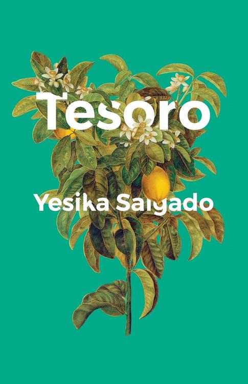 Tesoro Paperback by Yesika Salgado (Author)