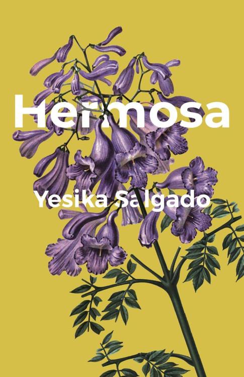Hermosa Paperback by Yesika Salgado  (Author)