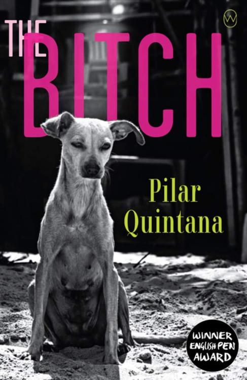 The Bitch Paperback by Pilar Quintana (Author), Lisa Dillman (Translator)