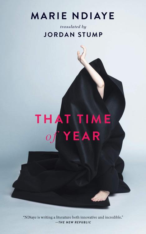 That Time of Year Hardcover by Marie NDiaye (Author), Jordan Stump (Translator)