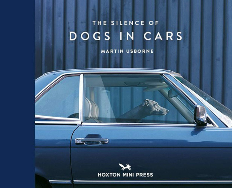 The Silence of Dogs in Cars Hardcover – May 1, 2020 by Martin Usborne  (Author)
