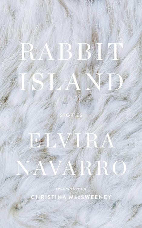 Rabbit Island Hardcover – February 9, 2021 by Elvira Navarro  (Author), Christina MacSweeney (Translator)