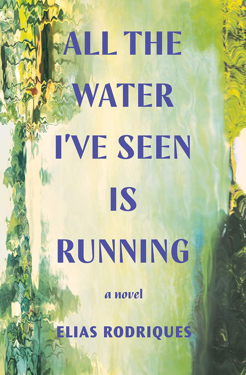All the Water I've Seen Is Running: A Novel Hardcover – June 22, 2021 by Elias Rodriques  (Author)