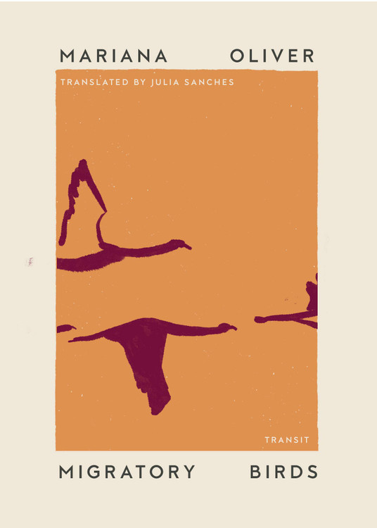Migratory Birds (Undelivered Lectures) Paperback – June 22, 2021 by Mariana Oliver  (Author), Julia Sanches (Translator)
