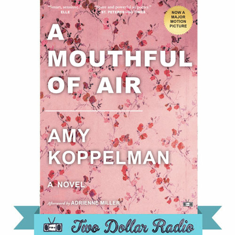 A Mouthful of Air  by Amy Koppelman
