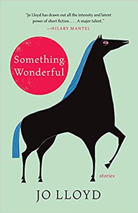 Something Wonderful: Stories Hardcover – August 24, 2021 by Jo Lloyd  (Author)