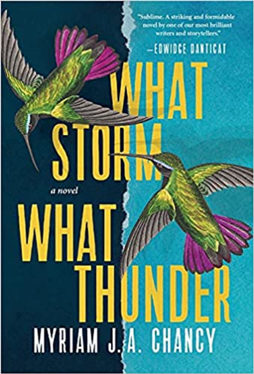 What Storm, What Thunder Hardcover – October 5, 2021 by Myriam J A Chancy  (Author)