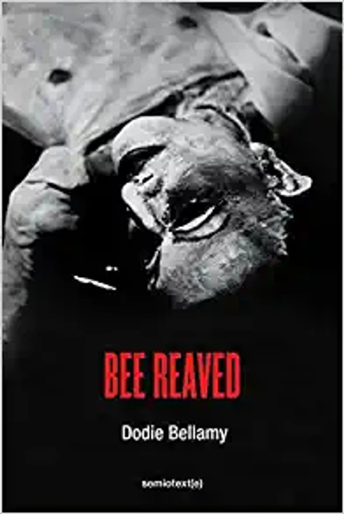 Bee Reaved (Semiotext(e) / Native Agents) Paperback – October 19, 2021 by Dodie Bellamy  (Author)