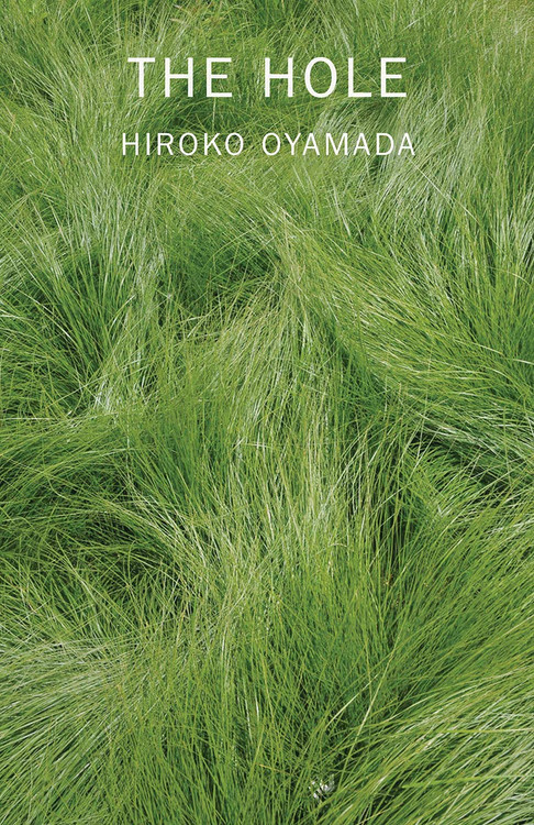 The Hole Paperback book by Hiroko Oyamada (Author), David Boyd (Translator)