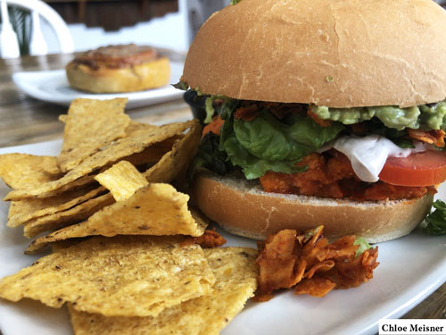 two-dollar-radio-hq-vegan-food-chloe-meisner.jpg