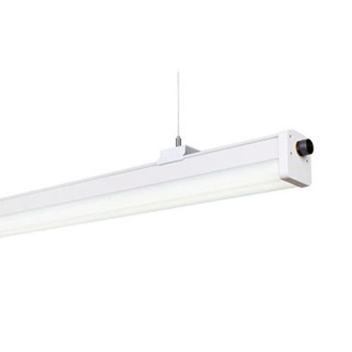Trunk Tina Series for Walk-in Cooler Lighting, Ceiling Lighting