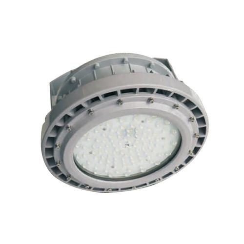 EVEJames, C Series, 100W or 150W LED Explosion Proof Light