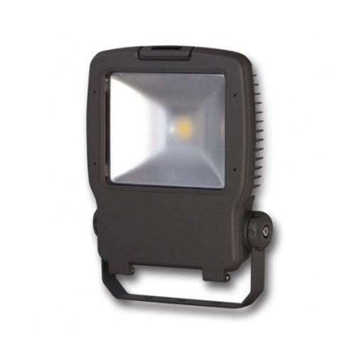 ILP 55 Watt LED Medium Flood Light