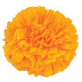 1 Color Plastic Poms - Adult
