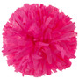 Plastic Neon Pink Stock Poms  - Adult