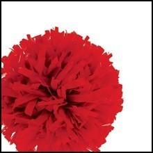 Pom Balls