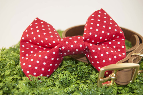 Red Polka Dot Pet Bow Tie
