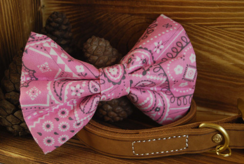 Pink Paisley Pet Bow Tie