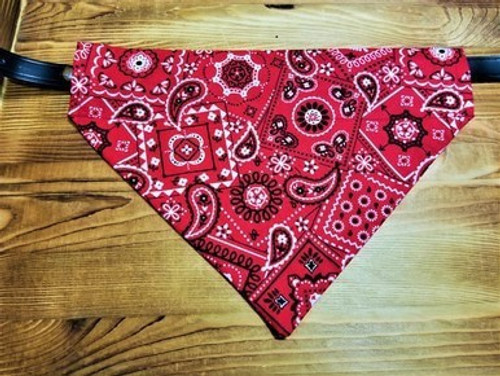 Red Paisley Dog Bandana