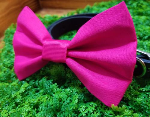 Pink Pet Bow Tie