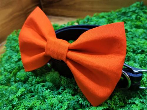 Orange Pet Bow Tie