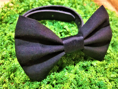 Black Pet Bow Tie