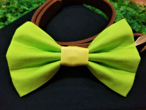 Lime Green Pet Bow Tie