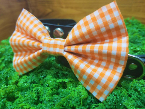 Orange Gingham Pet Bow Tie